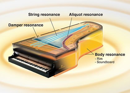 clp-685 Yamaha Clavinova CLP-685 Digital Piano 0C89320E5CEF4D3CB7A0DF4094240996 12074 8fa3c2d2a430695da366760aa09fdc14