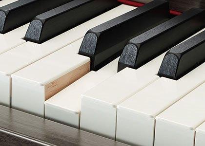 clp-685 Yamaha Clavinova CLP-685 Digital Piano C9262182124645D895071B506B4514DB 12074 771251f96b6d6e02447107bd9fdb56f2